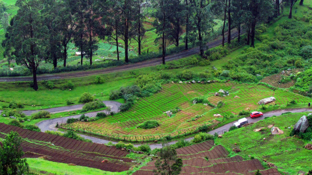 Ooty Honeymoon Destination India
