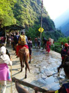 Kedarnath Temple Tour